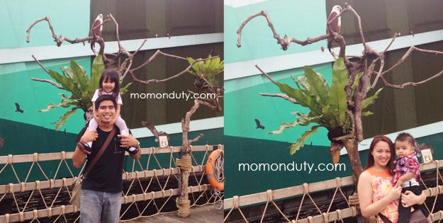 Manila Ocean Park Birds of Prey Kingdom