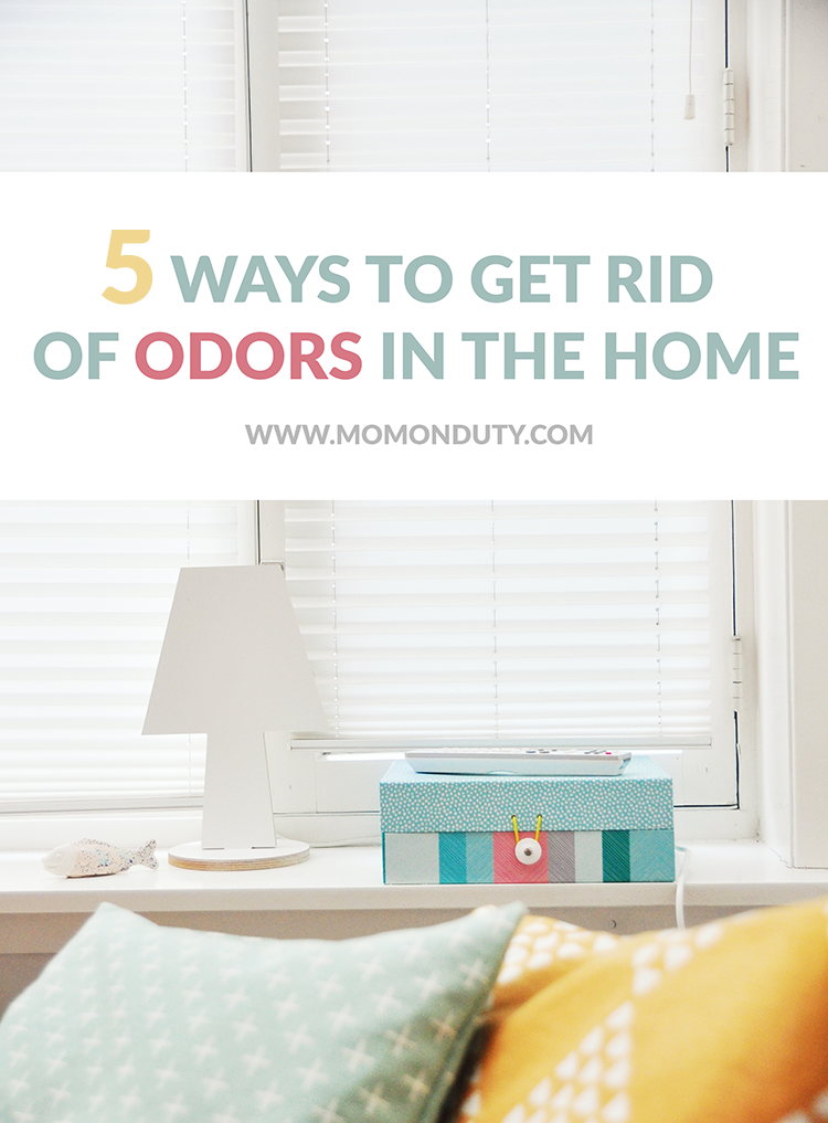 Get Rid Of Odors In House 28 Images 37 Best Images