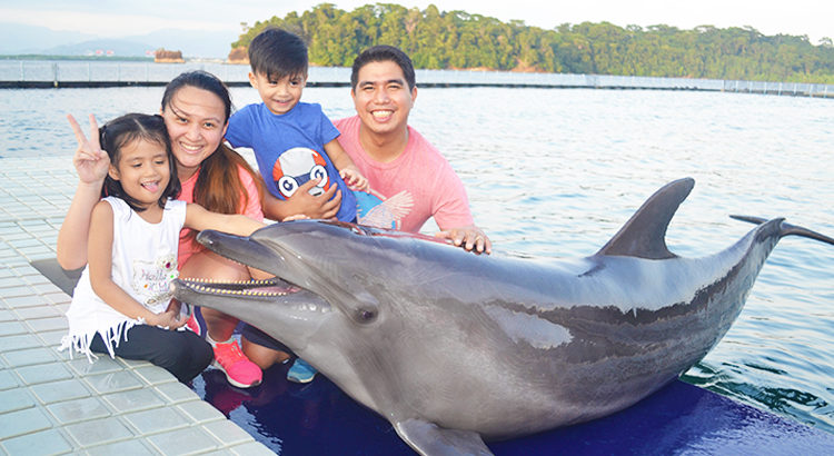 Get a chance to meet friendly sea animals close up at Ocean Adventure.