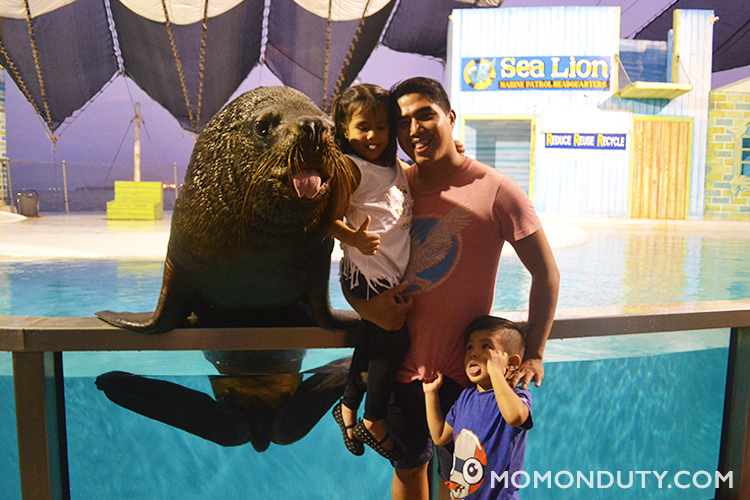 Strike a pose with a Sea Lion at Ocean Adventure Subic.